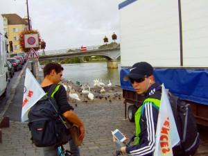 Avec les cygnes de Lagny-sur-Marne