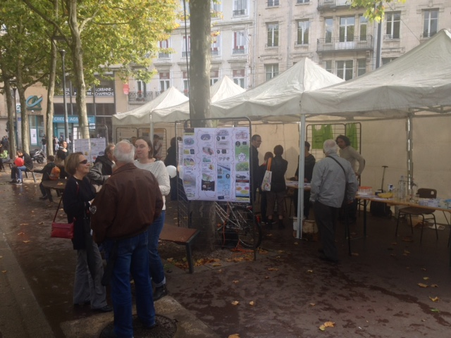Animations Place Maginot