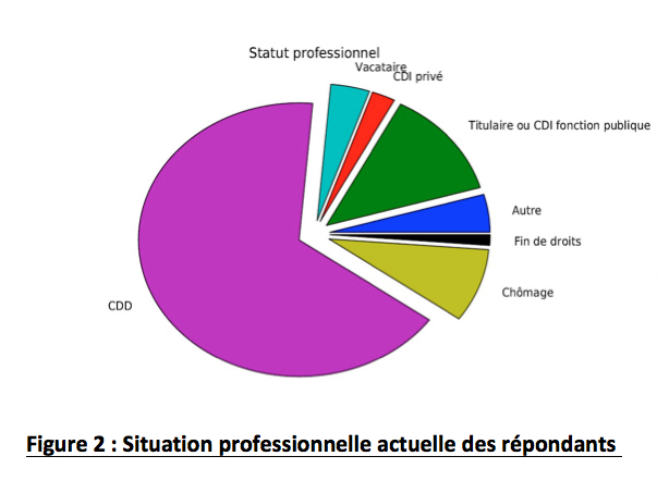 fig2 situation professionnelle